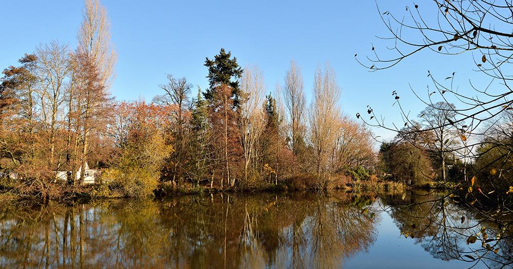 Quinta Lake